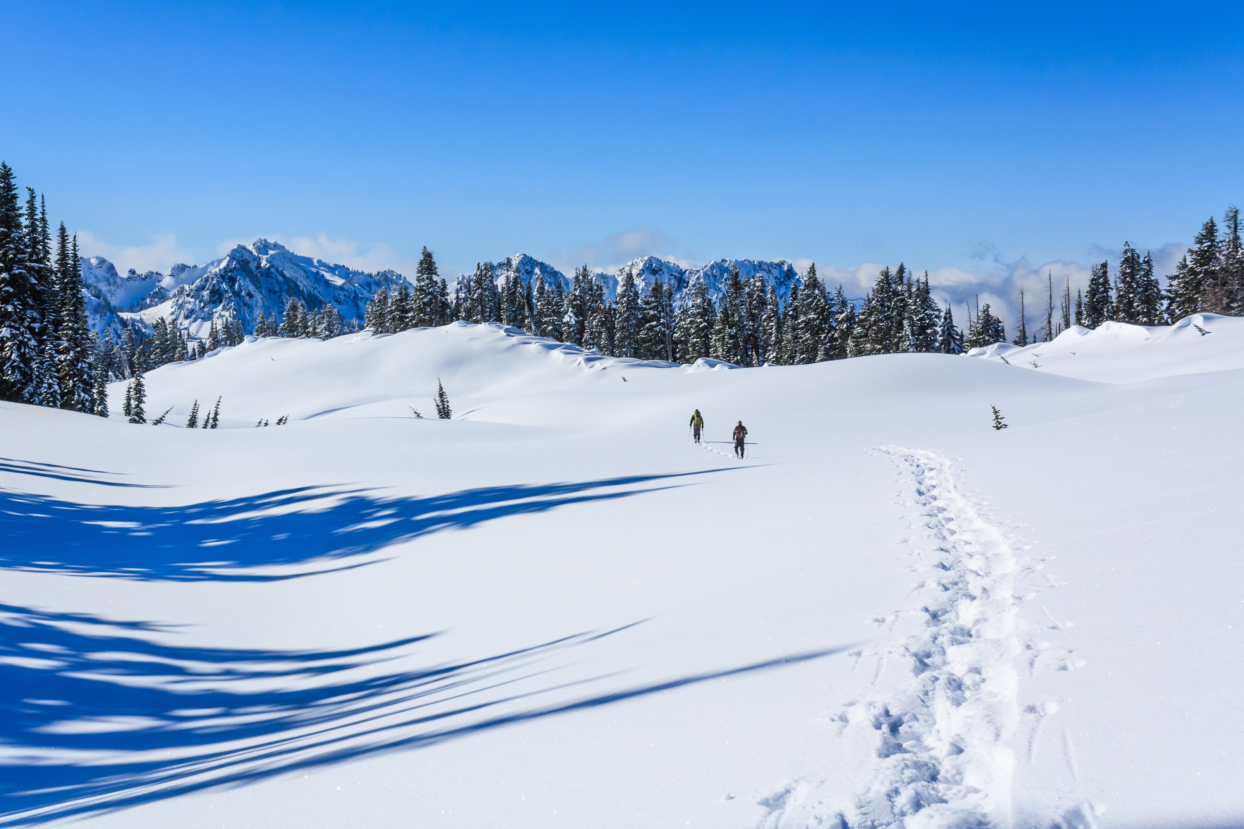 Mazama Ridge Snowshoe Photo by John Tomlin..jpg