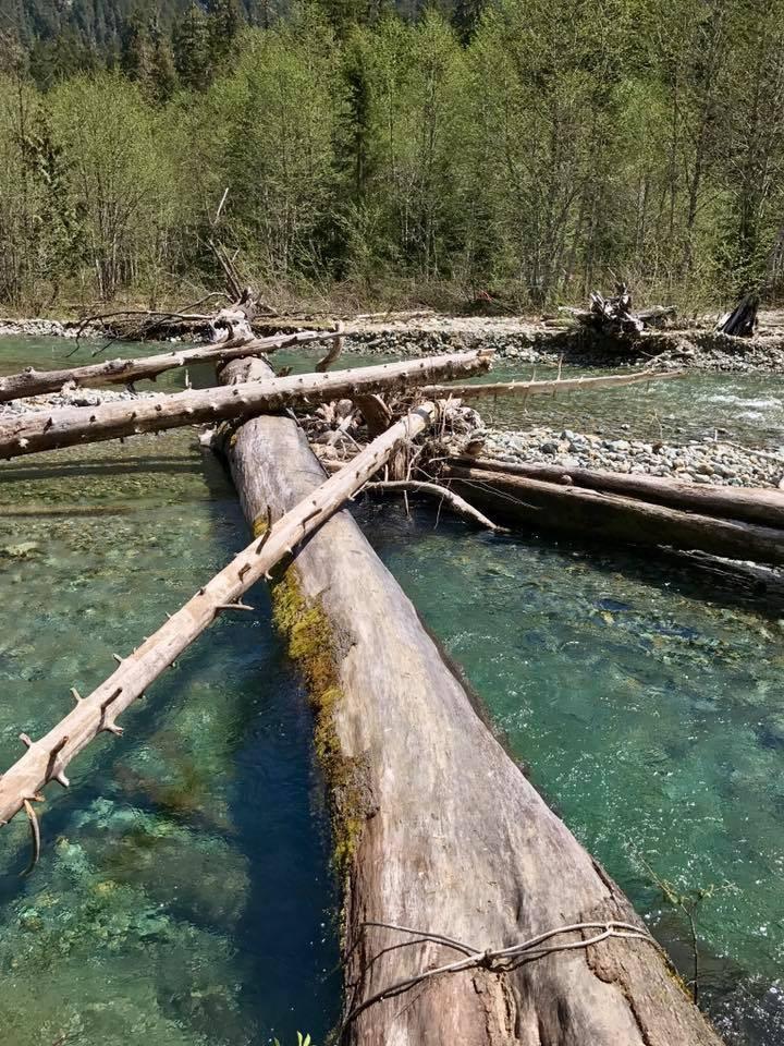 Monte Cristo log crossing by Joe Henry.jpeg