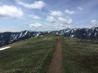 Trail cresting the summit.