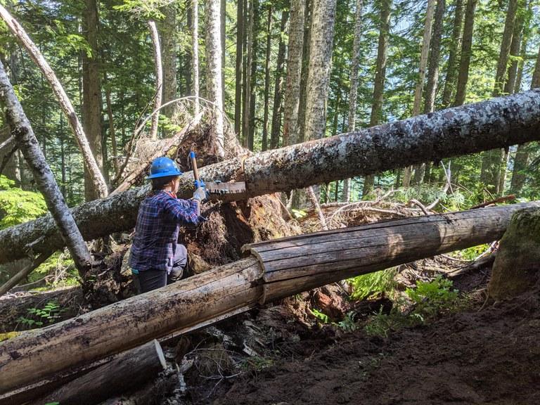 LeeAnne cutting a log on the Pratt
