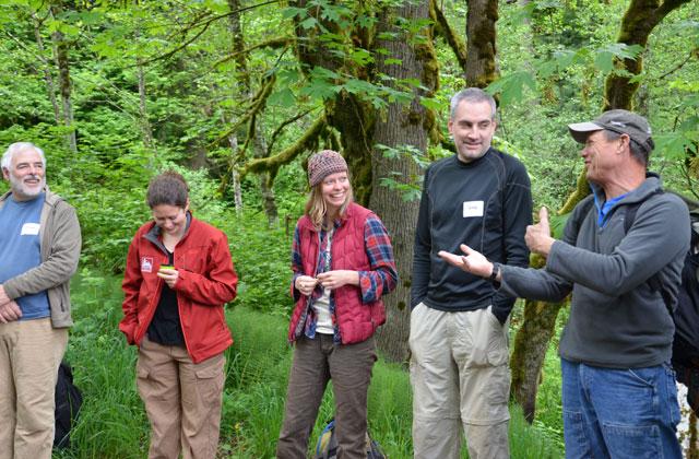 Laughing at Tiger Mountain Anna Roth