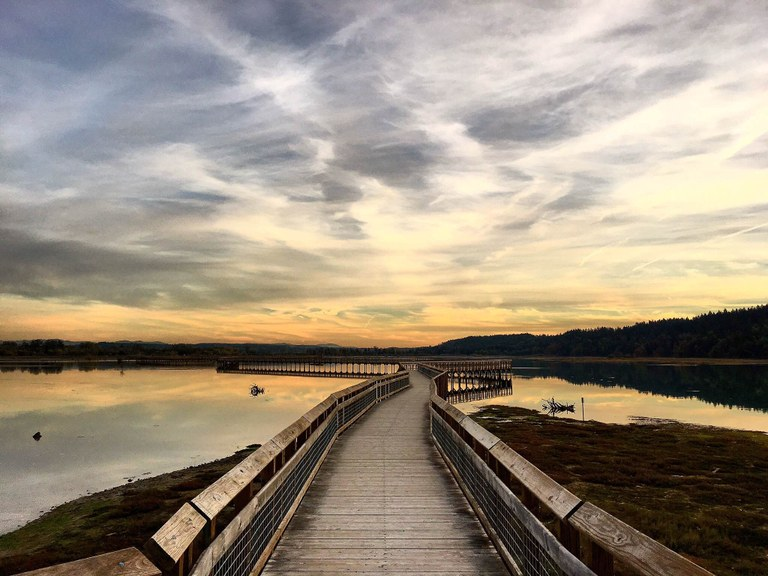 Wooden boardwalk winding through water with a sunset in the background.