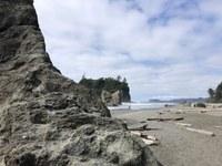 Beach on the olympic coast.