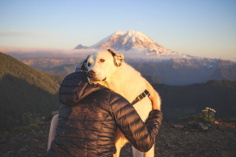 A hiker sitting on the ground hugs a large white dog.