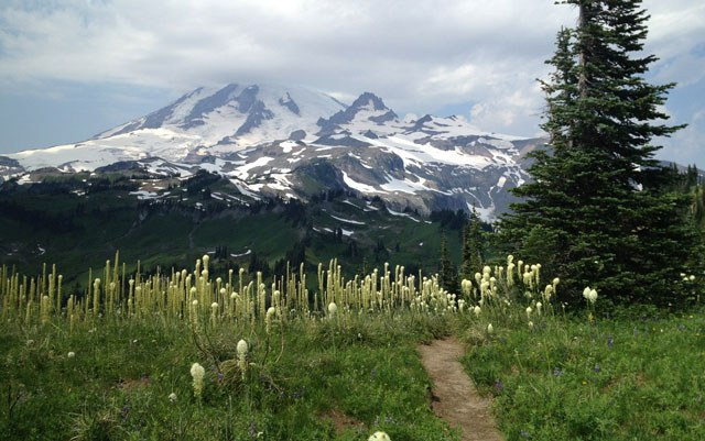 Mount Rainier viewed from the Wonderland Trail. Photo by Niko Niko.