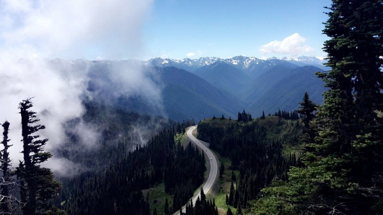 Road to Hurricane Ridge. Photo by Claire Braby.