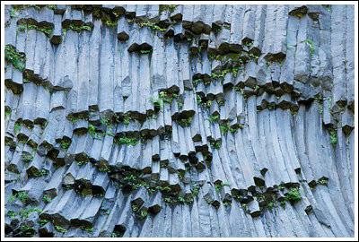 Dark gray rock formed in hexagonal columns rises in slight curves.