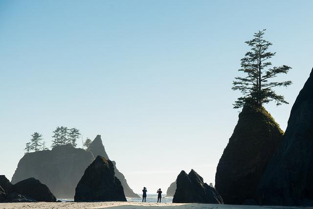 Shi Shi Beach in Olympic National Park