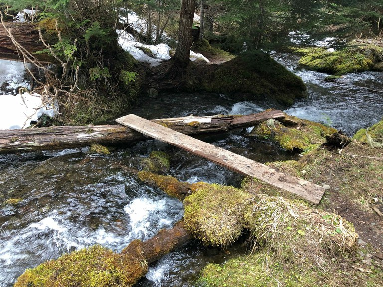 A plank spans halfway across a rushing creek.