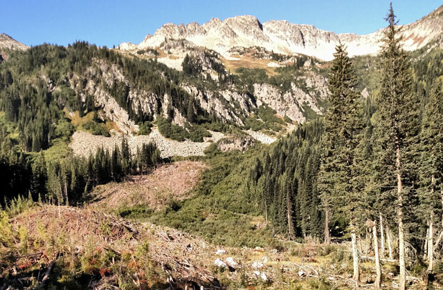 scenic mountains mcbride