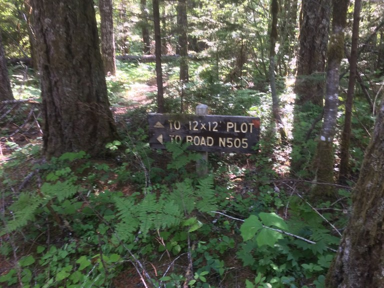 A sign in the trees points to the 12 by 12 plot of the trail and to Road N505.