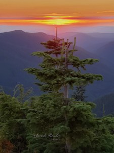 Sunset on Lookout Mountain with nameplate.jpg