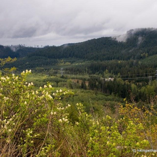 taylor mountain hikingwithmybrother