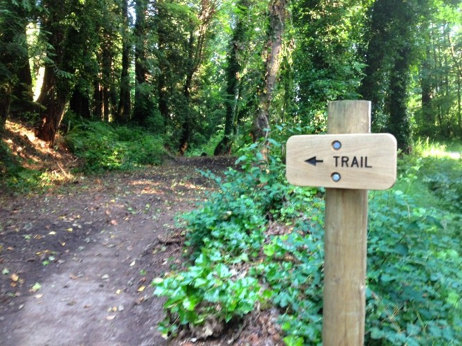 """A sign that reads """"trail."""" From WTA Archive."""