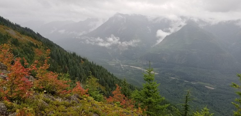 Trail to Mailbox Peak Photo by FoalOfATook.jpeg