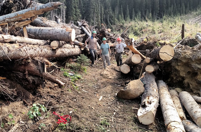cleared trail at snowall mcbride
