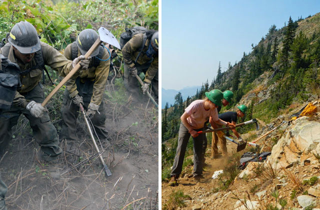 Wildland firefighters and trail crew