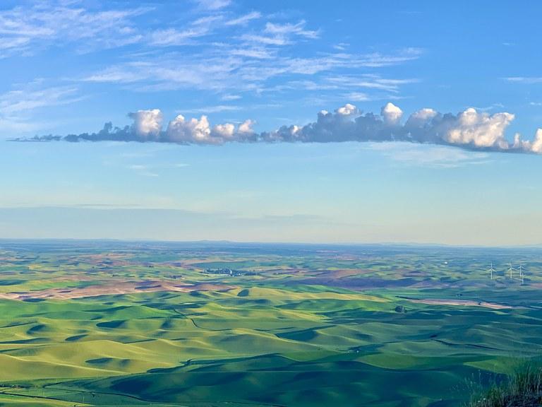 View from Steptoe Butte. Photo by Myra Prykhodko