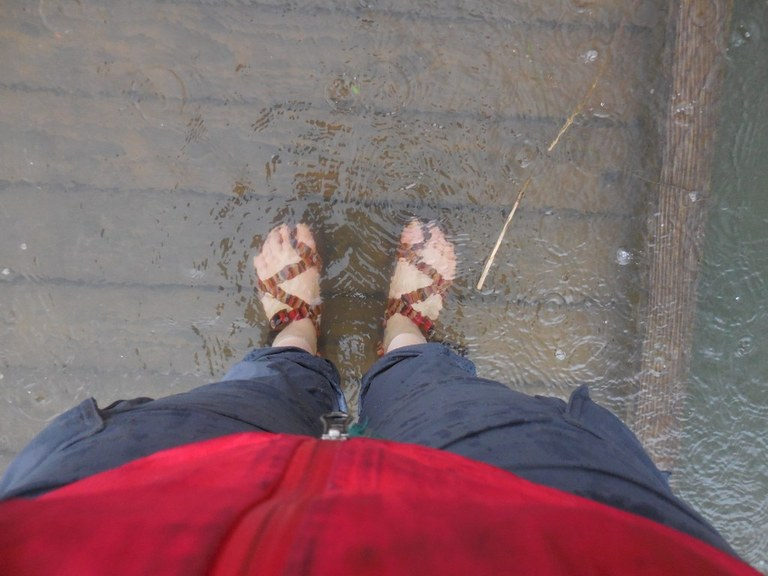 wet feet_anna roth.jpeg