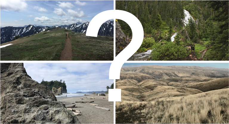 Four trail vistas with a question mark.