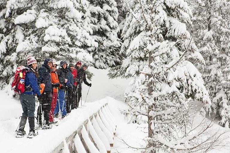 Snowshoeing 2 x 786