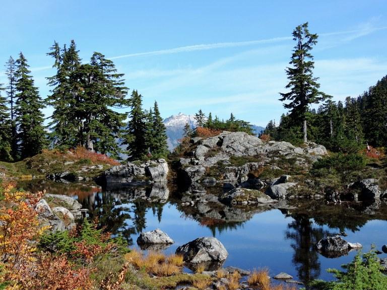 Walt Bailey Trail by Sona Atanesyan