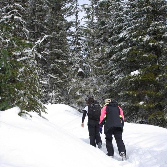 Mount Spokane - Photo by Weluv2hike.