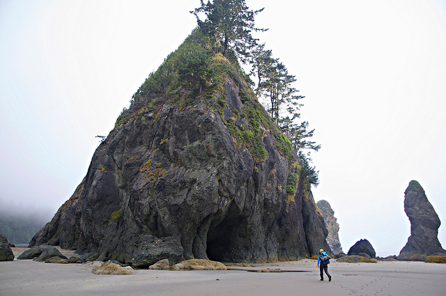 Backpacker at Shi Shi and Point of the Arches