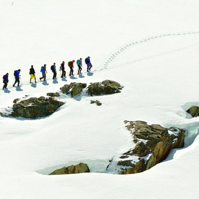 Snow tips by Doug Diekema