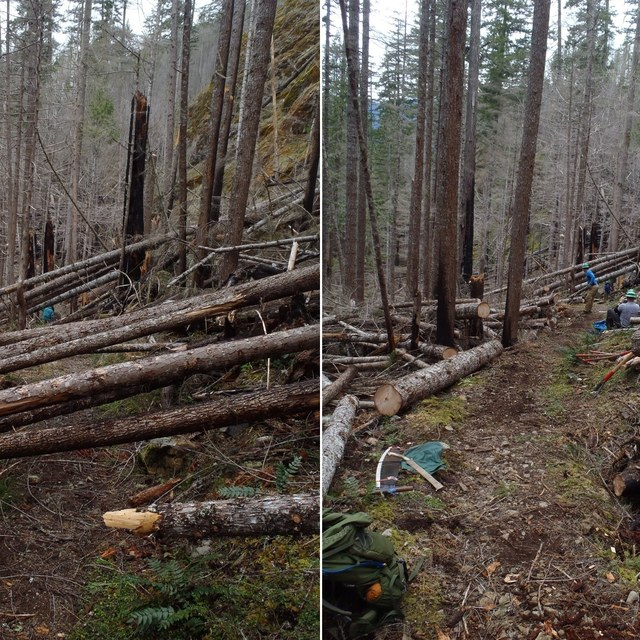 Duckabush before and after - Meagan MacKenzie