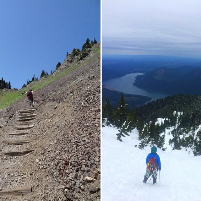 2015 and 2016 Mount Ellinor