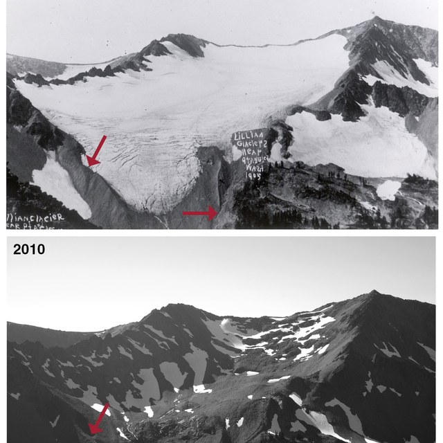 Lilian Glacier - Olympic National Park