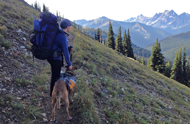 backpacking on the PCT with dog loren drummond