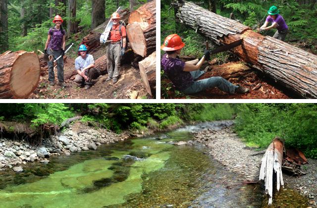 Quartz Creek BCRT