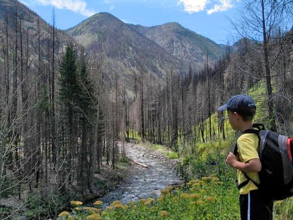 Kiddo hiker West Fork Methow River