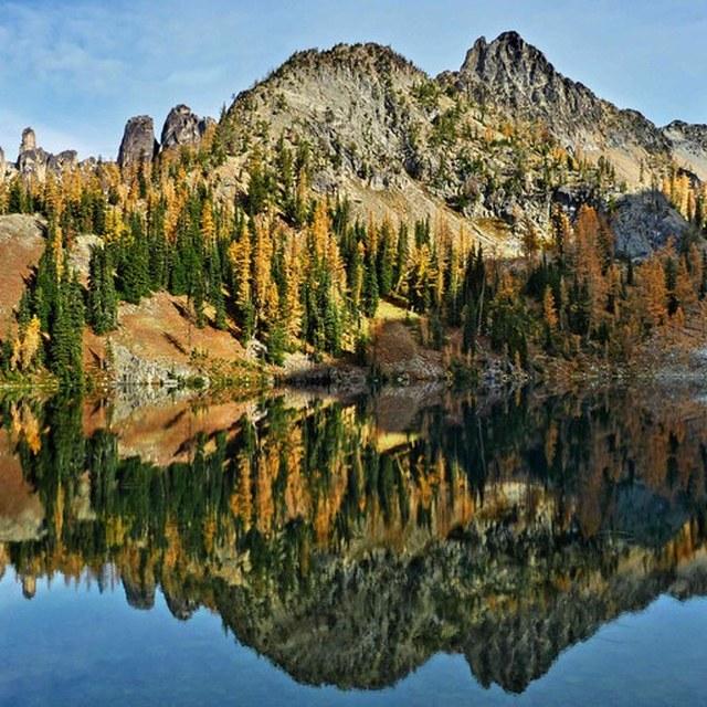 Blue Lake larches