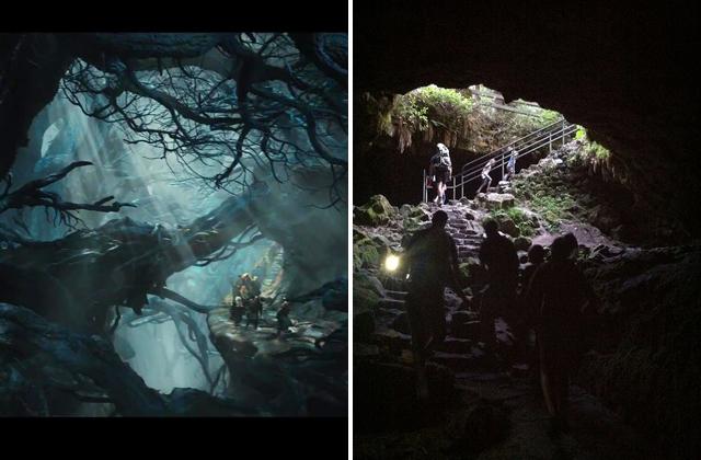 Hobbit Mirkwood and Ape Caves