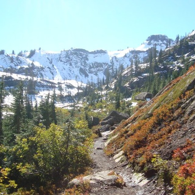 Fall along the Chain Lakes Trail