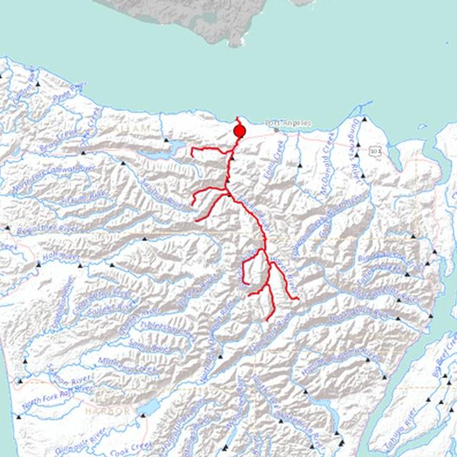 Elwha River Upstream Track