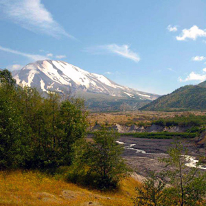 View of Mt St Helens from Hummocks Trail