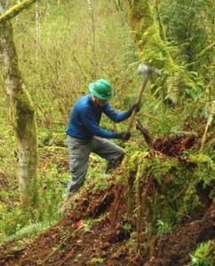 Evans Creek trail volunteer