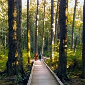 The Grand Ridge Park boardwalk on a HaT 2012 hike. Photo by Loren Drummond
