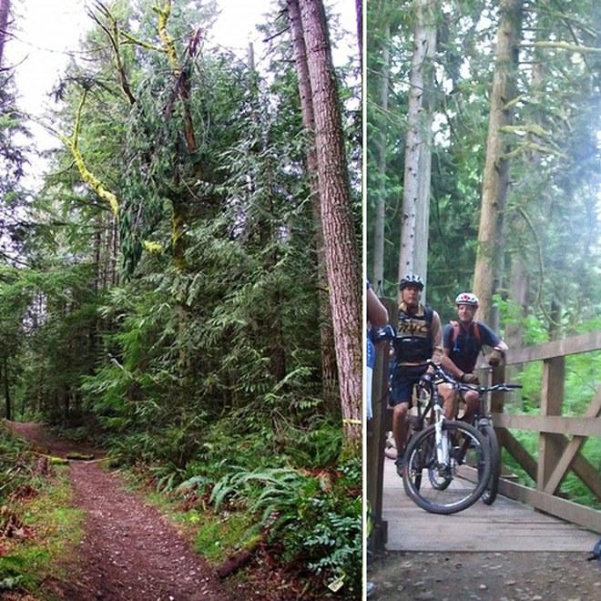 Grand Ridge Trail