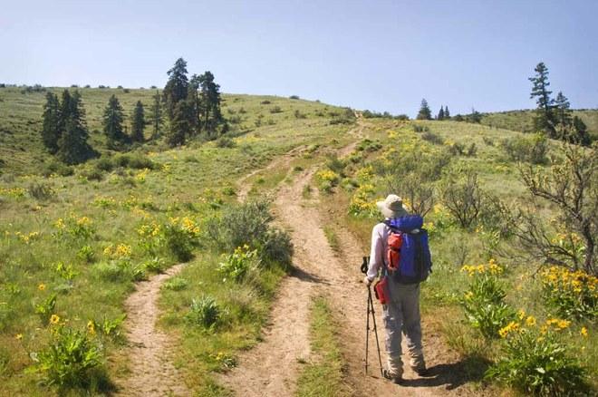 Ascending the Westberg Trail Photo (c) David Hagen.jpeg