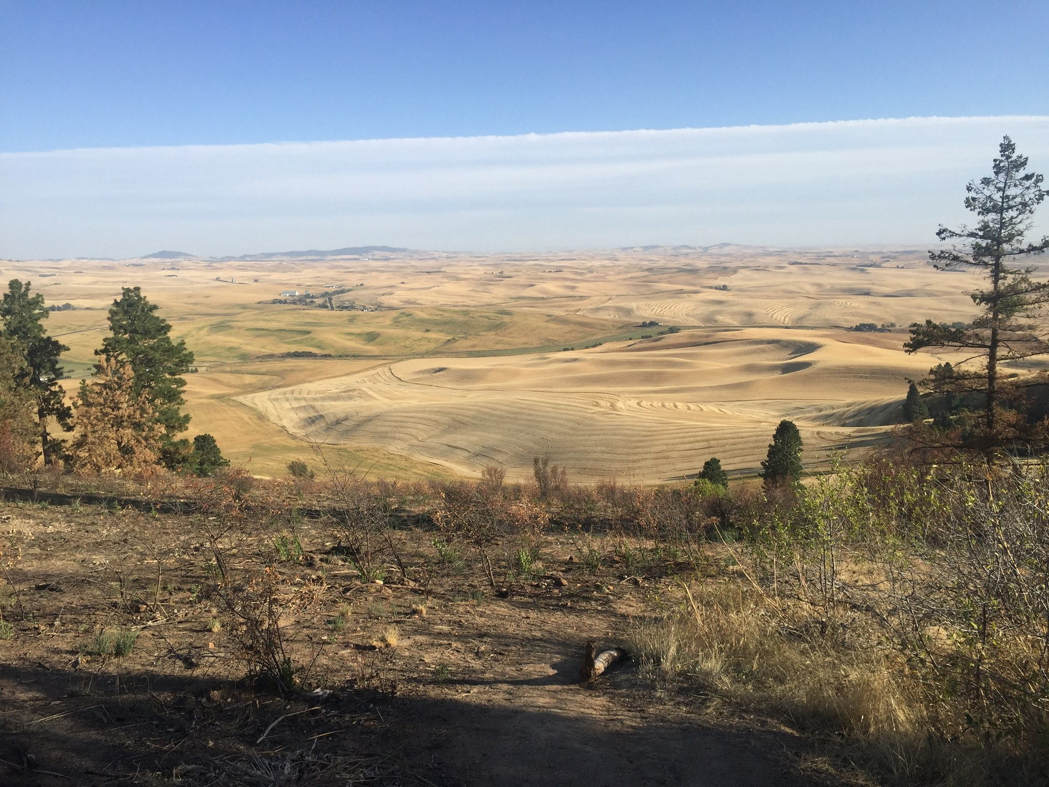 The view from Kamiak Butte. Photo by RLucido.