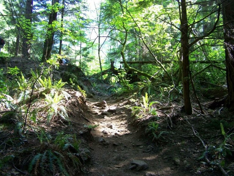 Trails To The West. Hikers use the full trail to