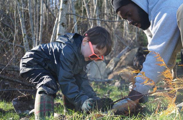 planting a tree heidi watters