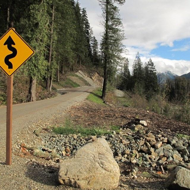 new suiattle road muledeer