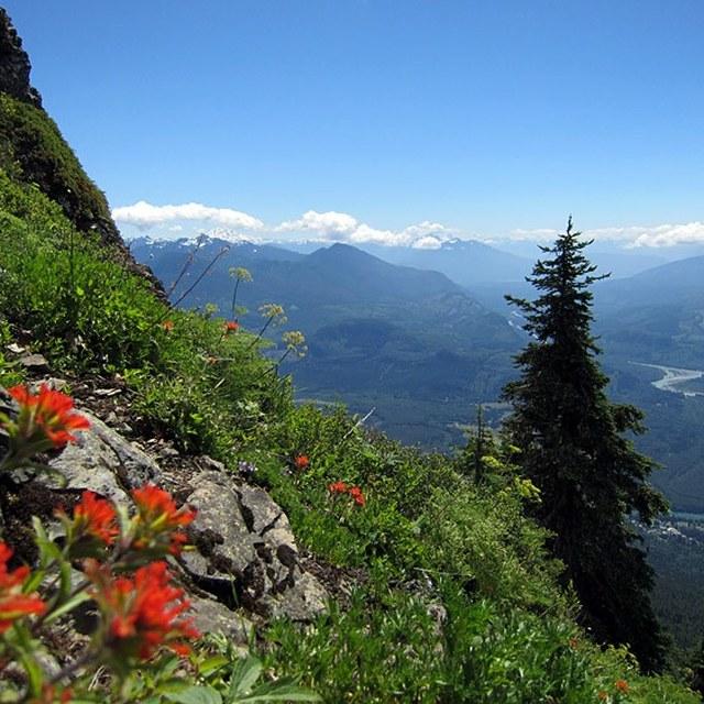 Sauk Mountain views