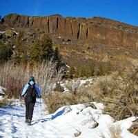 Northrup Canyon winter
